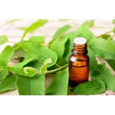 Eucalyptus Essential Oil 30ml