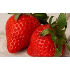 Strawberry Fragrance x 10ml